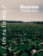 thumbnail of Buurma Farms Inc