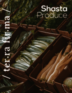 thumbnail of Shasta Produce