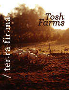 thumbnail of Tosh Farms