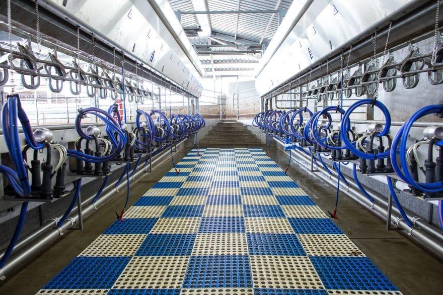 Modesto Dairy Solutions